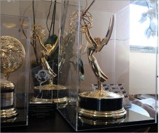Emmy Display Case