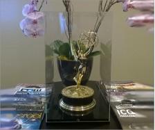 Custom Emmy Display Case