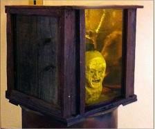 Head Case Display