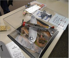 Model Plane Display Case