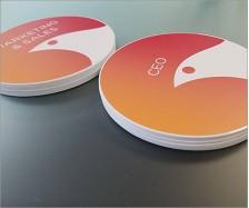 Soltec Acrylic Discs
